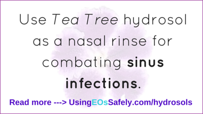 hydrosols for sinus infections