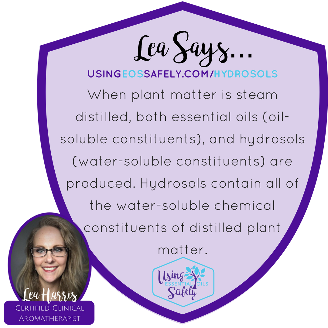 When plant matter is steam distilled, both essential oils (oil-soluble constituents), and hydrosols (water-soluble constituents) are produced. Hydrosols contain all of the water-soluble chemical constituents of distilled plant matter.
