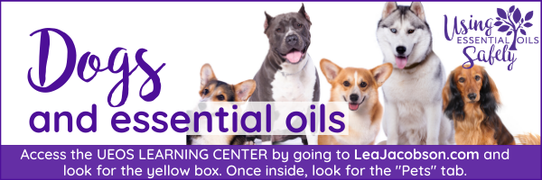 Is It Safe To Use Essential Oils With Dogs Using Essential Oils Safely