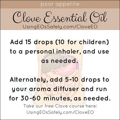 Clove_Recipe_Dig_Poorappetite