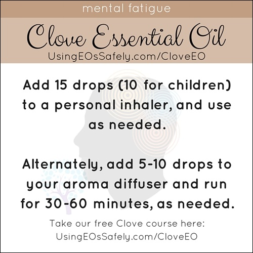 Clove_Recipe_Limbic_Mentalfatigue