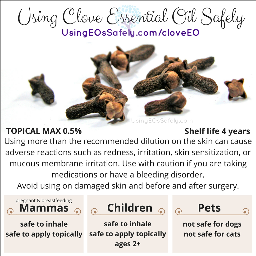 Clove_safety