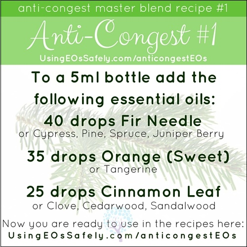 AntiCongest_Recipe_Original1