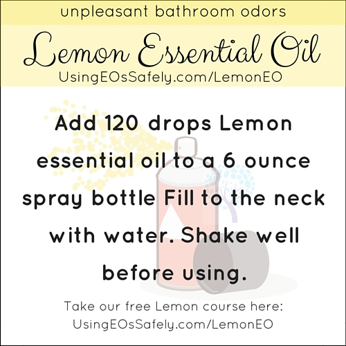 22Lemon_Recipe_Home_Bathroomspray
