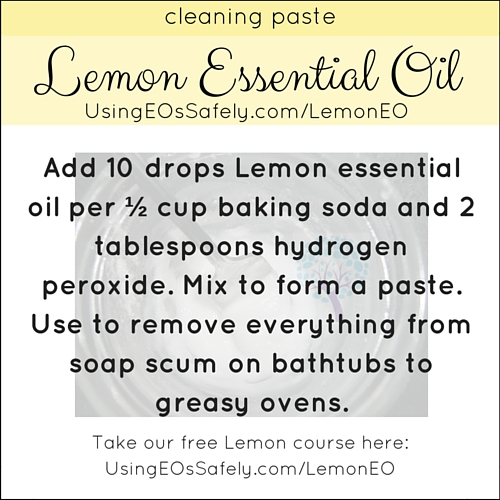 23Lemon_Recipe_Home_Cleaningpaste