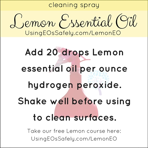 24Lemon_Recipe_Home_Cleaningspray