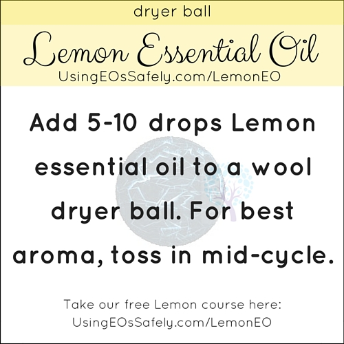 25Lemon_Recipe_Home_Dryerball