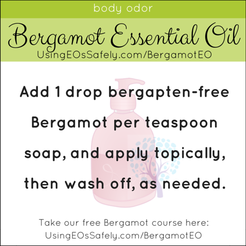 16Bergamot_Recipes_Skin_BodyOdor