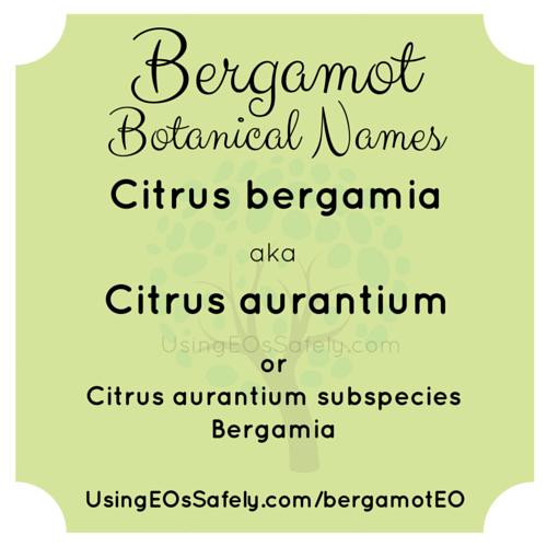 Bergamot_BotanicalNames