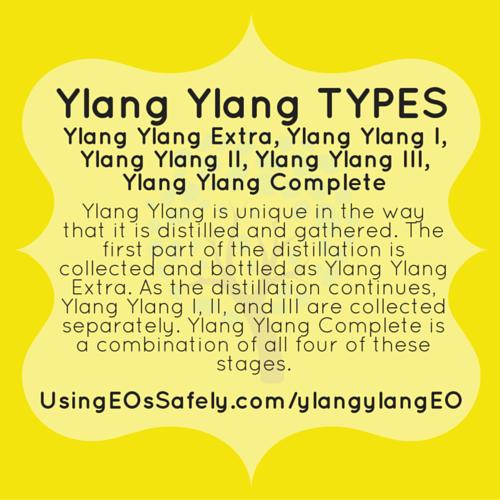 01YY_types