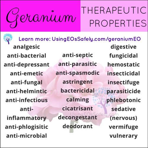 03Geranium_TPs