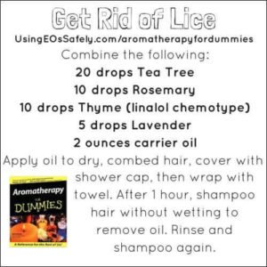 Essential Oils For Lice How To Prevent Lice And Remove