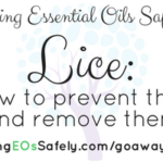 Essential Oils for Lice  – how to prevent lice and remove lice