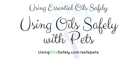 safe-pets
