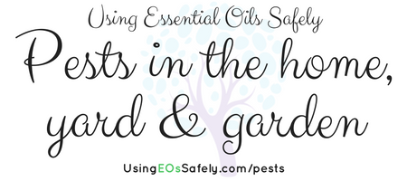 pests-in-the-home-yard-garden
