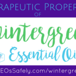 Therapeutic Properties of Wintergreen Essential Oil