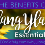 Benefits of Ylang Ylang Essential Oils