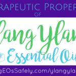 Therapeutic Properties of Ylang Ylang Essential Oil